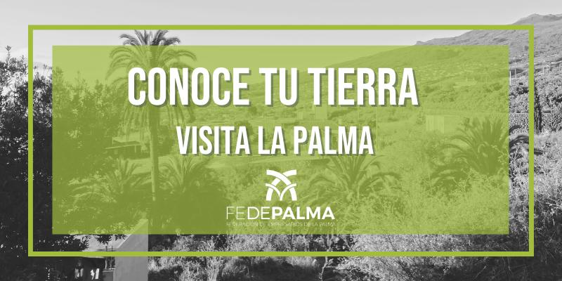 Este verano visita La Palma y conoce tu tierra