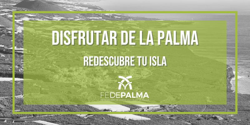 Disfrutar de La Palma: redescubre tu isla
